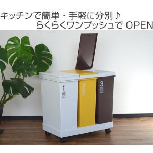 ゴミ箱 分別 資源ゴミ 横型 3分別ワゴン カラー ( ダストボックス 分別ゴミ箱 ごみ箱 ) livingut 02