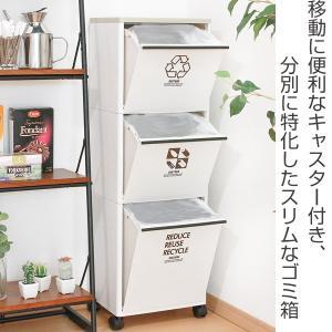 ゴミ箱 資源ゴミ分別ワゴン(ワイド)3段 ( ごみ箱 ダストボックス 防臭 スリム キッチン 台所 )|livingut|02