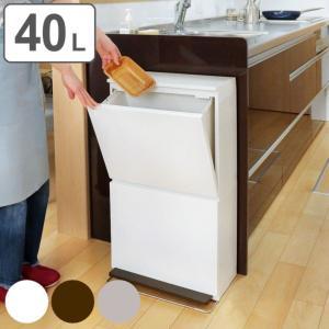 分別ゴミ箱 縦型 2段 薄型 ワイド 40L ベーシックカラー ( ごみ箱 ペダル ダストボックス 防臭 スリム キッチン 台所 )の画像