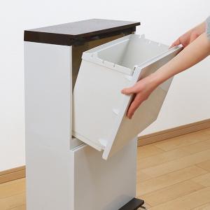 ゴミ箱 分別 2段 薄型 ワイド 40L 縦型 分別ゴミ箱 ベーシックカラー ( キッチン 分別 ごみ箱 ふた付き スリム ペダル )|livingut|11