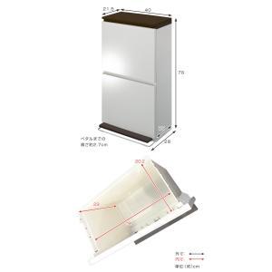 ゴミ箱 分別 2段 薄型 ワイド 40L 縦型 分別ゴミ箱 ベーシックカラー ( キッチン 分別 ごみ箱 ふた付き スリム ペダル )|livingut|04