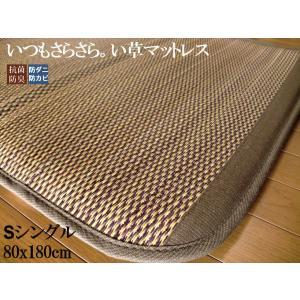 畳 い草 マットレス シングル 80×180cm ユニット畳 置き畳 防ダニ 防カビ フローリング 布団 敷物 収納 軽量 カーペット|local-tokitoki