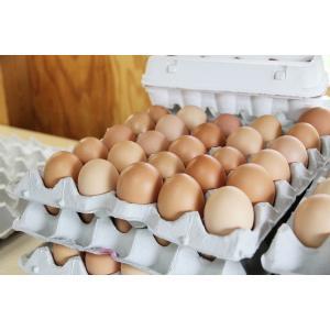 「やますけ農園」娘のためのたまご(30個入り)「純国産鶏ゴトウもみじ」 localtoglobal