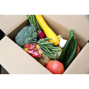 旬の野菜7〜8品目の詰め合わせセットです。 会津地方の野菜が中心となります。 時期によっては伝統野菜...