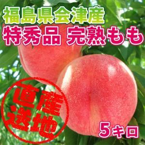 「極上のフルーツセレクション」会津産 桃 特秀品 約5kg(16玉前後) 匠の桃を産地直送もぎたてをお届けします「贈答用にも最適です」|localtoglobal