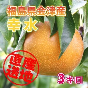 「極上のフルーツセレクション」会津産 梨(品種:幸水)  約3kg フルーツランドよよぜんより産地直送もぎたてをお届けします|localtoglobal
