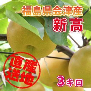 「極上のフルーツセレクション」会津産 梨(品種:新高)  約3kg フルーツランドよよぜんより産地直送もぎたてをお届けします|localtoglobal