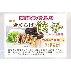 国産きくらげたっぷり 薬膳食材入り きくらげ餃子10個入り×3袋(冷凍) localtoglobal