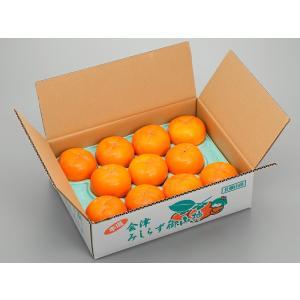 「オーチャード斉藤」会津みしらず 御山柿 3kg3L(11玉)|localtoglobal