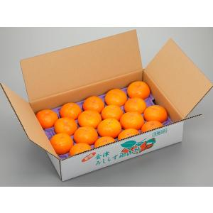 「オーチャード斉藤」会津みしらず 御山柿 5kg3L(18玉)|localtoglobal