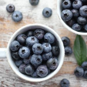 【送料無料】国産 ブルーベリー 冷凍 会津産 約1kg  栽培期間中農薬不使用|localtoglobal