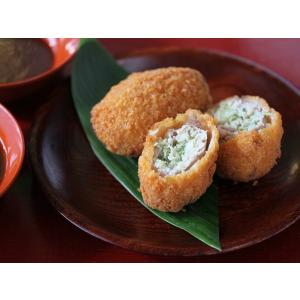 【串鶴】おうちで揚げたてカツギョウザ【レビューで10%オフクーポン】|localtoglobal