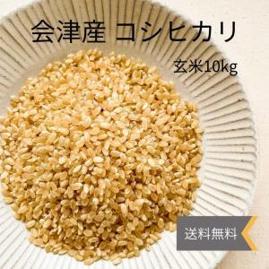 令和2年産 会津産コシヒカリ 玄米 10kg ※特別価格|localtoglobal