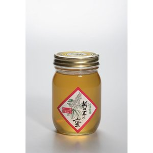 「レビューを書いて10%OFFクーポンプレゼント」「ハニー松本」会津産天然蜂蜜 栃の木の蜜 500g localtoglobal