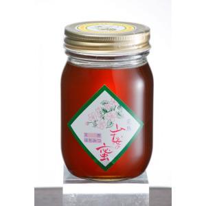 「レビューを書いて10%OFFクーポンプレゼント」「ハニー松本」会津産天然蜂蜜 山桜の蜜 500g localtoglobal