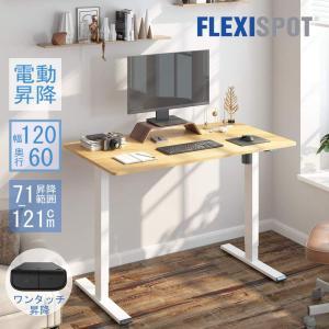 FlexiSpot 電動昇降デスク 電動式 スタンディングデスク PCデスク パソコンデスク 作業台...