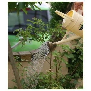 DULTON ダルトン ジョウロ WATERING CAN 雑貨 ジョーロ じょうろ おしゃれ 水差し 植木鉢 フラワー ブリキ アンティーク レトロ シャビー風 ガーデニング logical-japan