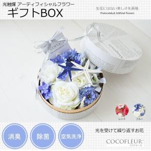 光触媒 アーティフィシャルフラワー(造花) ギフトBOX|lohasshop-y