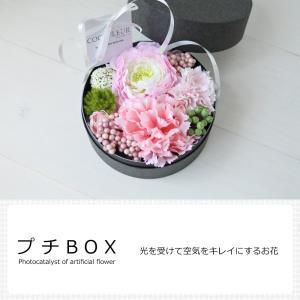 光触媒 アーティフィシャルフラワー(造花) プチBOX|lohasshop-y