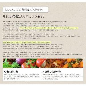 ポイント消化 ドライフルーツ ミックス 砂糖不使用 無添加 4種 250g|lohasshop|07