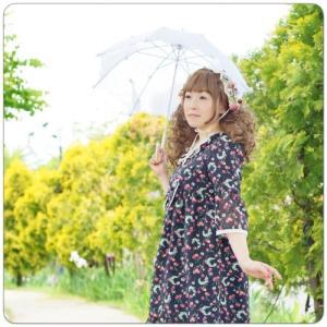 Fairy wish クラシカル刺繍パラソル クラシカル レース 日傘 UVカット 夏 上品|loliloli