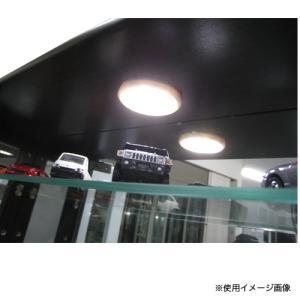 シェイプ用 丸型LEDダウンライト コレクションラック用ライト 収納用照明 オプション LED照明 ライト シェイプ 丸型LEDダウンライト SHAPE-LED 【着日指定不可】|lookit