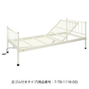 病室用ベッド 診療所 病棟 角度調節 TB-1116-02 送料無料|lookit