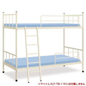 2段ベッド ベッド 医療 病院 病室 介護 TB-1159 送料無料|lookit