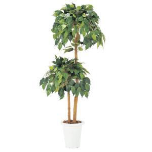 【法人限定】 ベンジャミン 観葉植物 人工 グリーン 環境 贈り物 G-B lookit