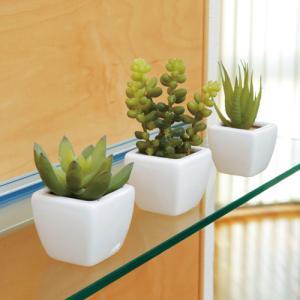 多肉植物3点セット 人工 観葉植物 人工観葉植物 造花 光触媒 インテリア ギフト プレゼント 人気アイテム 231B42-40|lookit