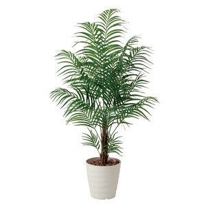 【2%OFFクーポン配布8/15〜8/20まで】アレカパーム 観葉植物 150cm 人工樹木 光触媒 鉢植え インテリアグリーン 人工観葉植物 W-410A360-11|lookit