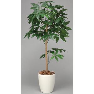 パキラ 観葉植物 150cm 鉢植え 植木 庭木 C4008-200 送料無料|lookit
