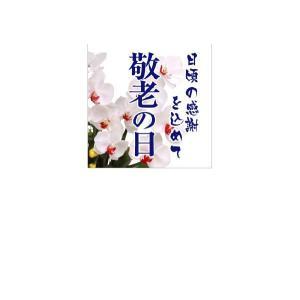 『敬老の日』 ウィンドシート2枚セット サイズ:430×430|looky