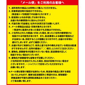 メール便送料無料 エンジェルカラー バンビシリーズ アニバーサリーエディション マンスリー 度なし 1箱2枚入 1ヶ月 カラコン 人気|loook|05