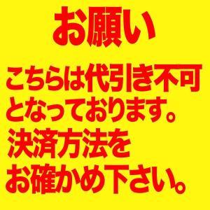 メール便送料無料 エンジェルカラー バンビシリーズ アニバーサリーエディション マンスリー 度なし 1箱2枚入 1ヶ月 カラコン 人気|loook|06