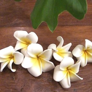 造花 セット フランジパニ フラワー オブジェ メール便対応商品|loopsky