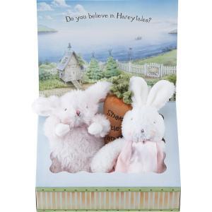 バニーズバイザベイ にぎにぎトイ 雪うさぎの赤ちゃん にんじんラトル ギフトBOXセット ピンク  ベビー用品 出産祝ギフト 誕生祝い 初節句祝 お祝い 内祝 お返し|lotus-bear