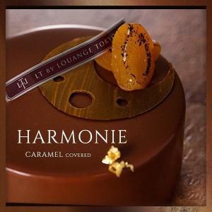 HARMONIE アルモニー  名称 ケーキ 内容量 1個 目安サイズ 直径12cm 賞味期限 冷凍...