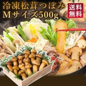 松茸 マツタケ まつたけ 500g 急速冷凍 中国産 松茸ホール 冷凍松茸 中つぼみ 松茸ごはん 松茸茶碗蒸し 松茸すき焼き 松茸づくし