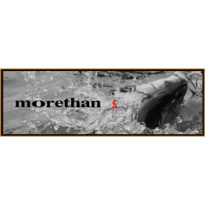 ダイワシーバスロッドMORETHAN BRANZINO AGS (SPINNING MODELS)97ML/M・J|lovefish