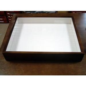 標本箱 バードウイング製 BW中型 UVカット lovelyinsect