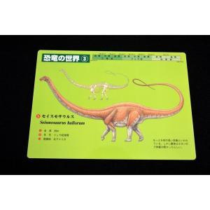 下敷 恐竜の世界3 lovelyinsect