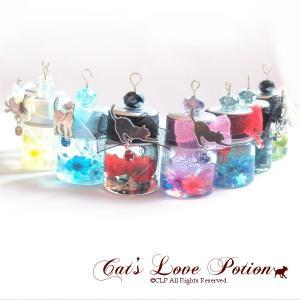 猫 イヤホンジャック ねこリボンの花小瓶 ミニチュア ハーバリウム ストラップ iphone コネクタカバー Cat's Love Potion|lovexclp