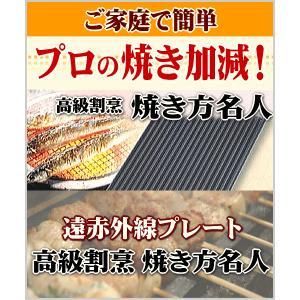 遠赤外線プレート 高級割烹 焼き方名人|lowprice