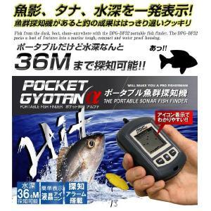 ポケット魚探α(アルファ) DPG-DF52 lowprice