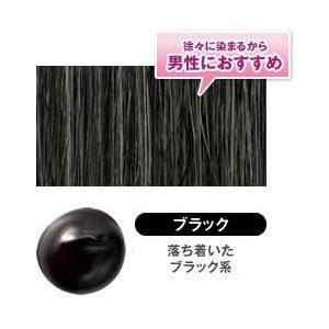 DHC Q10美容液カラートリートメント ブラック|lowprice