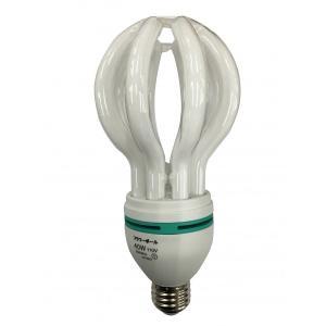 電球型蛍光灯 フラワーボール 40W110V|lows