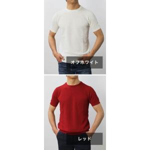 ジョルディーズ / JEORDIE'S / コットン アイスクレープ クルーネック 半袖 ニット Tシャツ / 返品・交換可能|luccicare|08