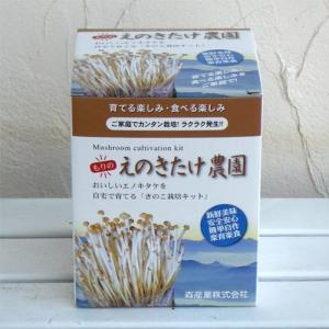 エノキ栽培キット もりのえのき農園|lucia0322