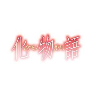化物語(4)特装版 (講談社キャラクターズA)